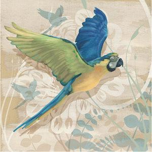 106901GG-Parrot-Society-I