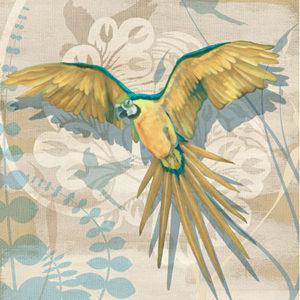 106902GG-Parrot-Society-II
