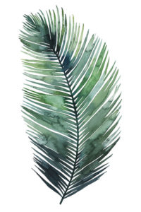 155796D-Untethered-Palm-VII